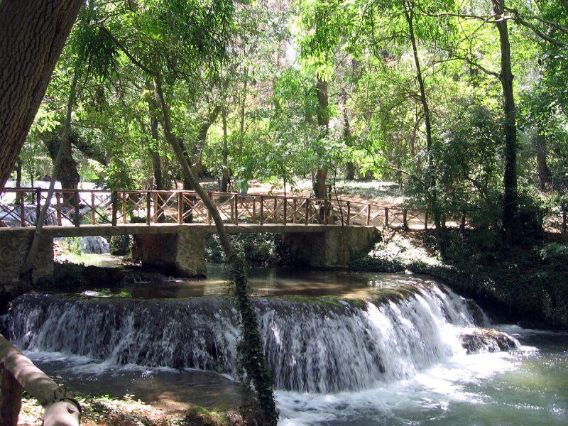Foto de Canaan - Los Vadillos del Parque Natural del Monasterio de Piedra