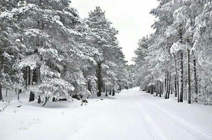 Nos encantan los paisajes nevados, como este en Guadalaviar en Teruel - dbenitod