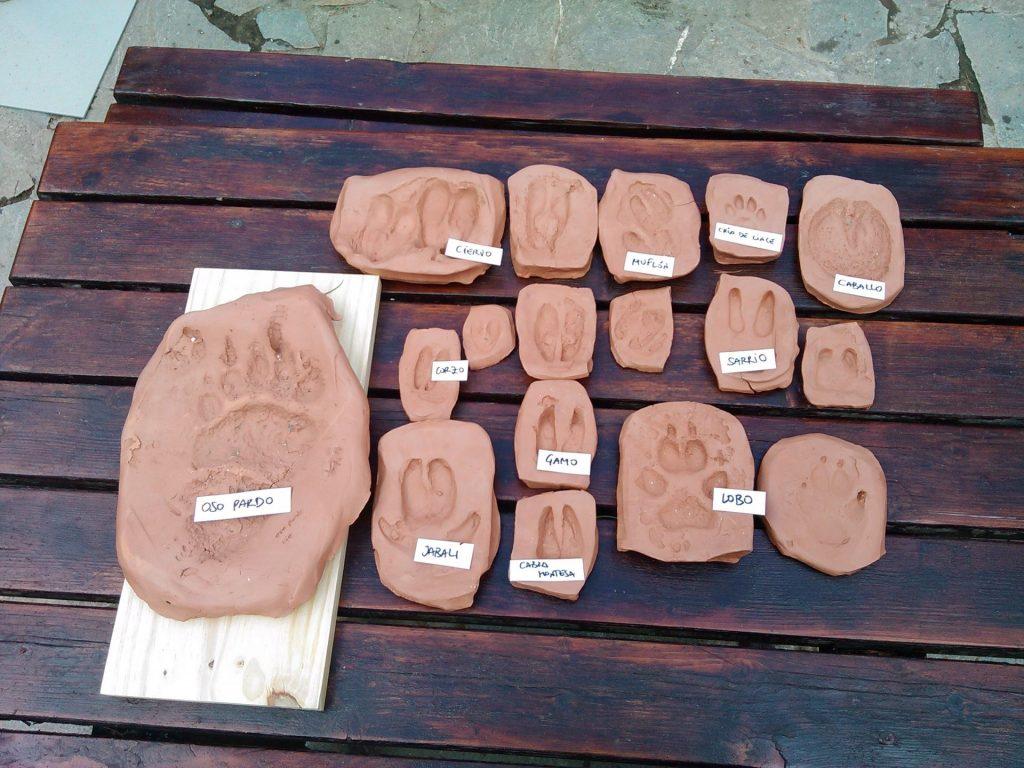 Lacuniacha - Mesa de huellas con todas las de los diferentes animales del parque
